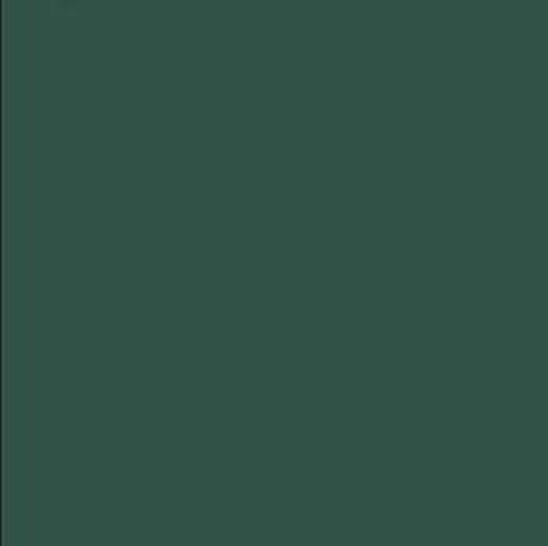 Farbton der Mai-Tech Holzlasur: Moosgrün